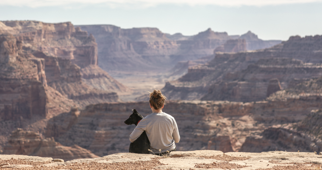 Taking Pets on Your Travel Nurse Jobs: How to Plan for Success